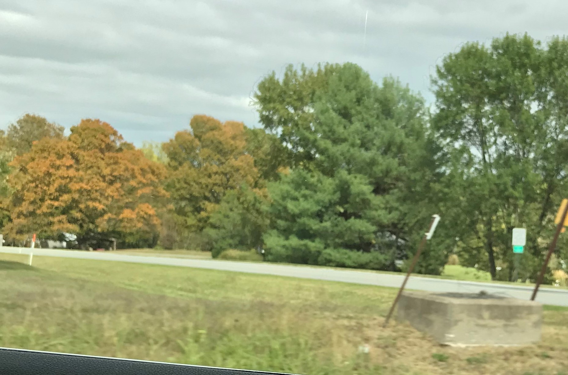 Just starting to see some tree color.
