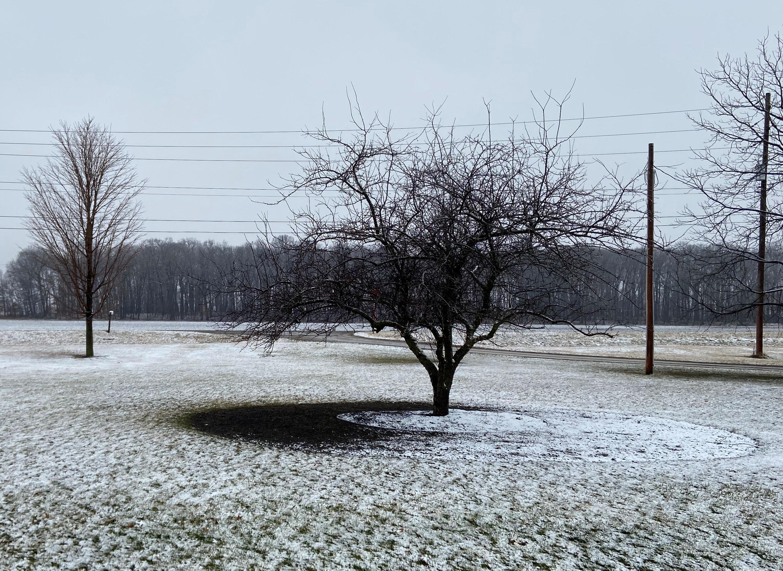 2020 Feb Ice.Snow
